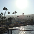 One more Catalina Island picture